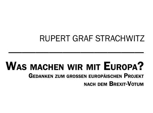 Was machen wir mit Europa?