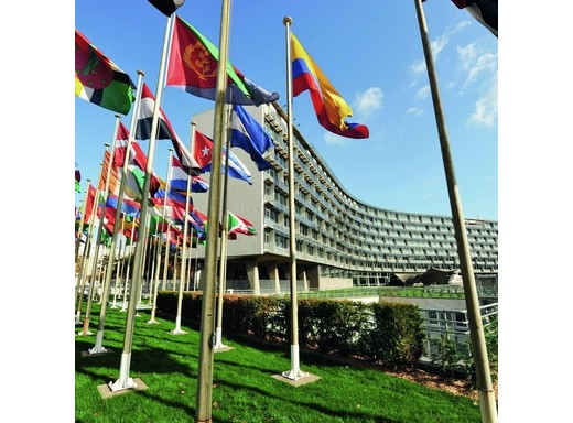 Rotary-Tag bei der UNESCO