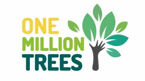 BuSo 2020/21: One Million Trees