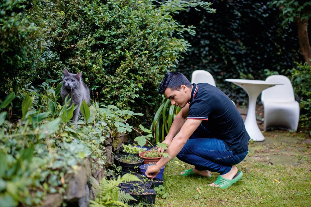 Navids grüner Daumen: Im Garten hinter dem Haus kümmert er sich um die Kräuter und paukt dabei die deutschen Namen