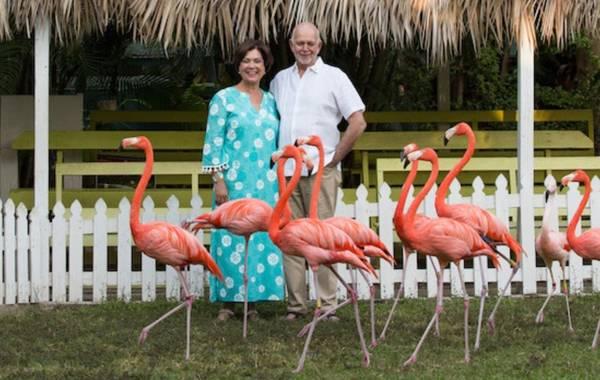 Flamingo Challenge weiterführen