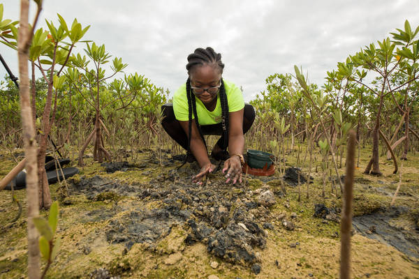 Umweltschutz als neuer Schwerpunkt